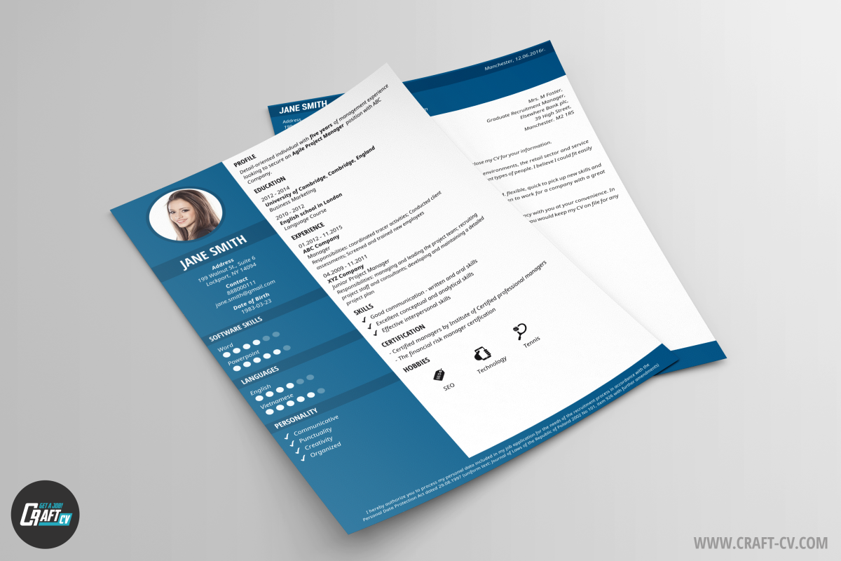 professional cv example glory