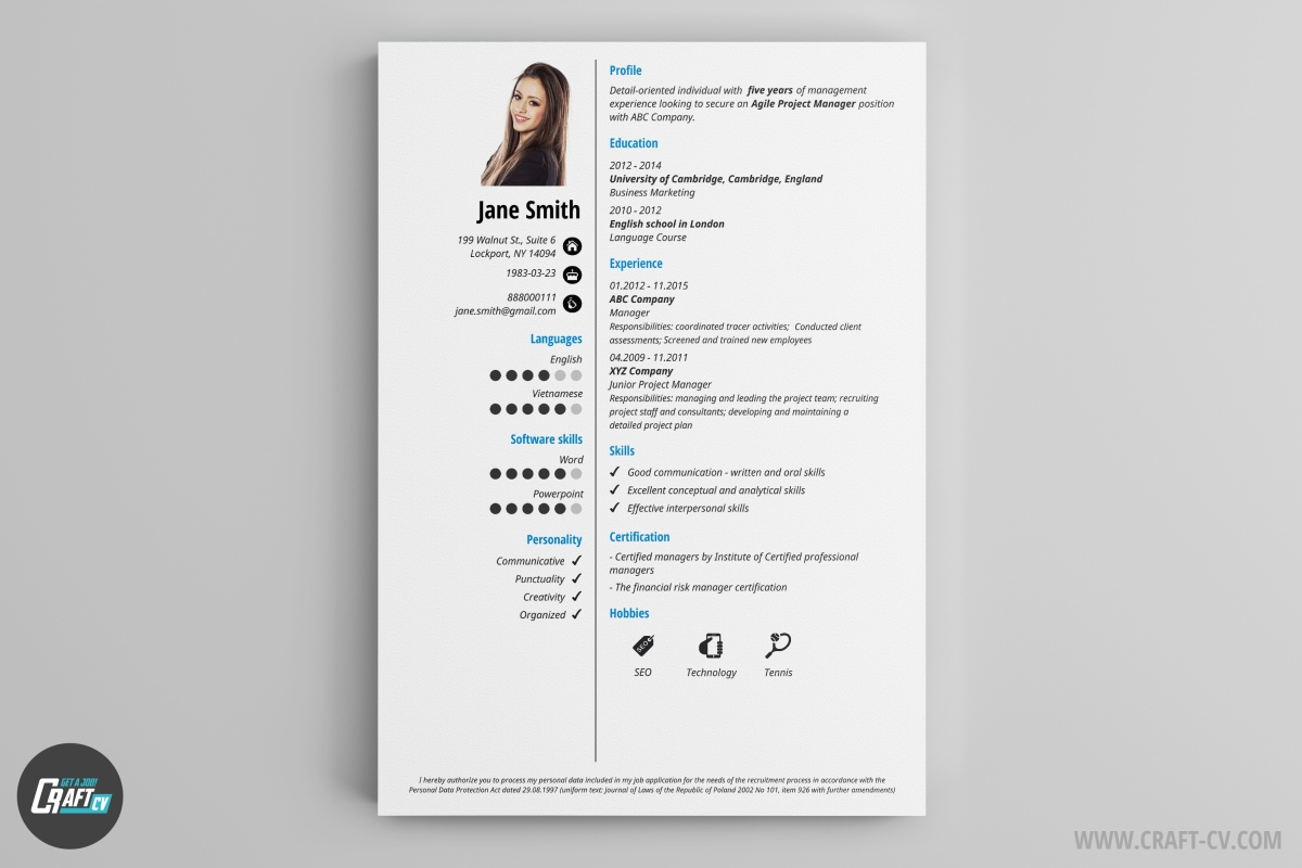 sample professional cv template