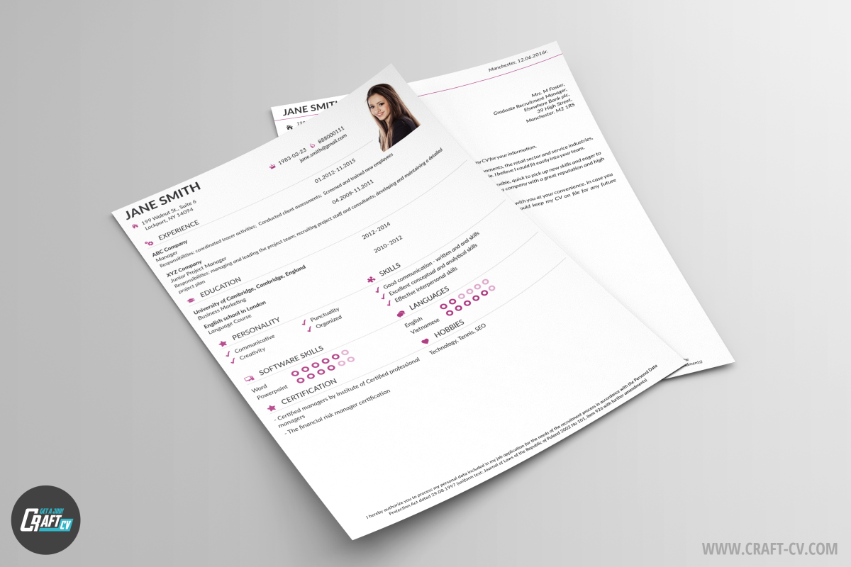Free CV Examples Classic