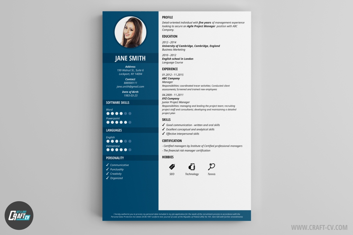 Templates cv stylish