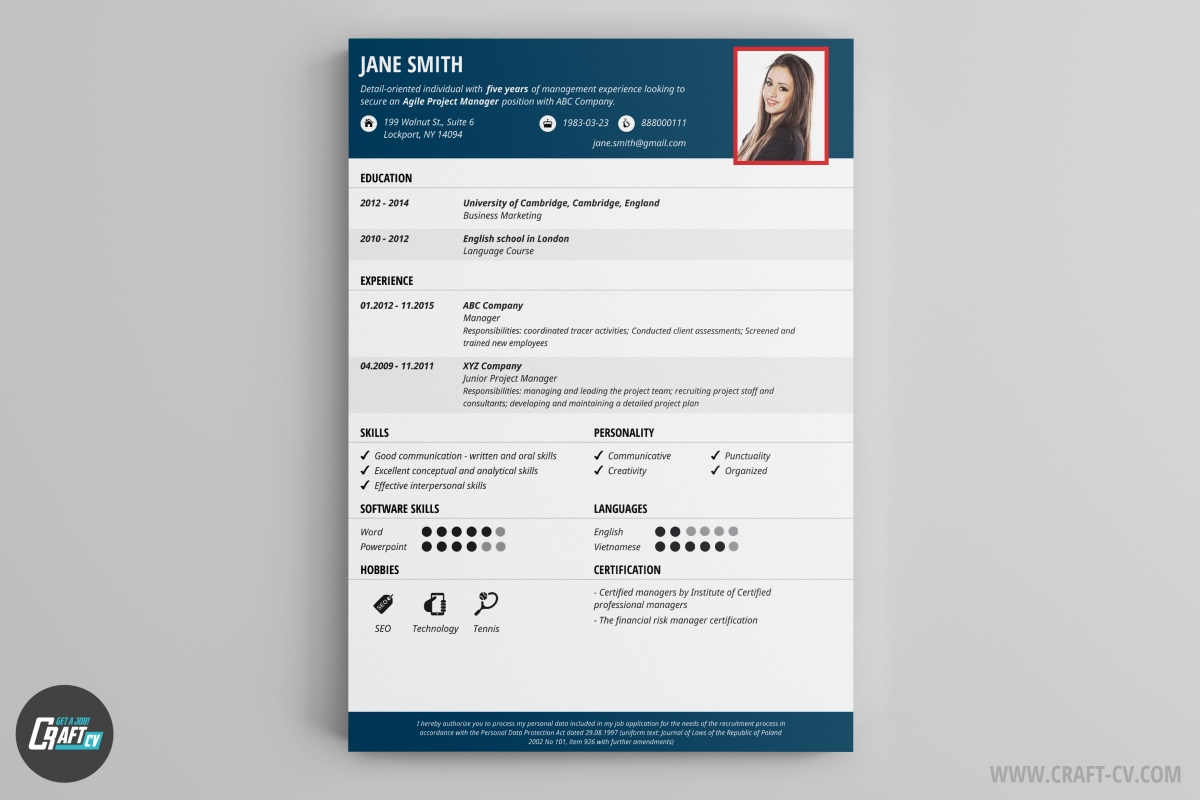 solid is a professional cv template that can be used for more official job interviews the light gray boxes add style to the elegant composition - Professional Cv Template