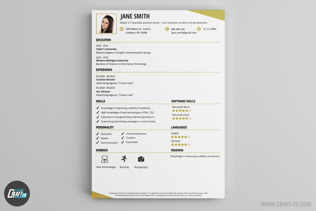 the best cv examples