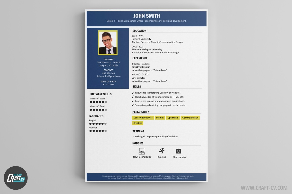 Professional CV Template CV Builder  Michigan Works Resume Builder