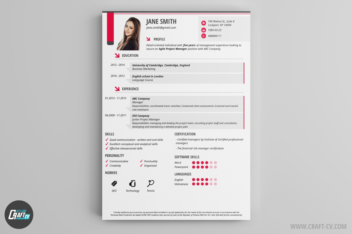 cv maker professional cv examples online cv builder craftcv the design is very clear and it has small graphic additives iris i a perfect resume template for ones who want to emphasize