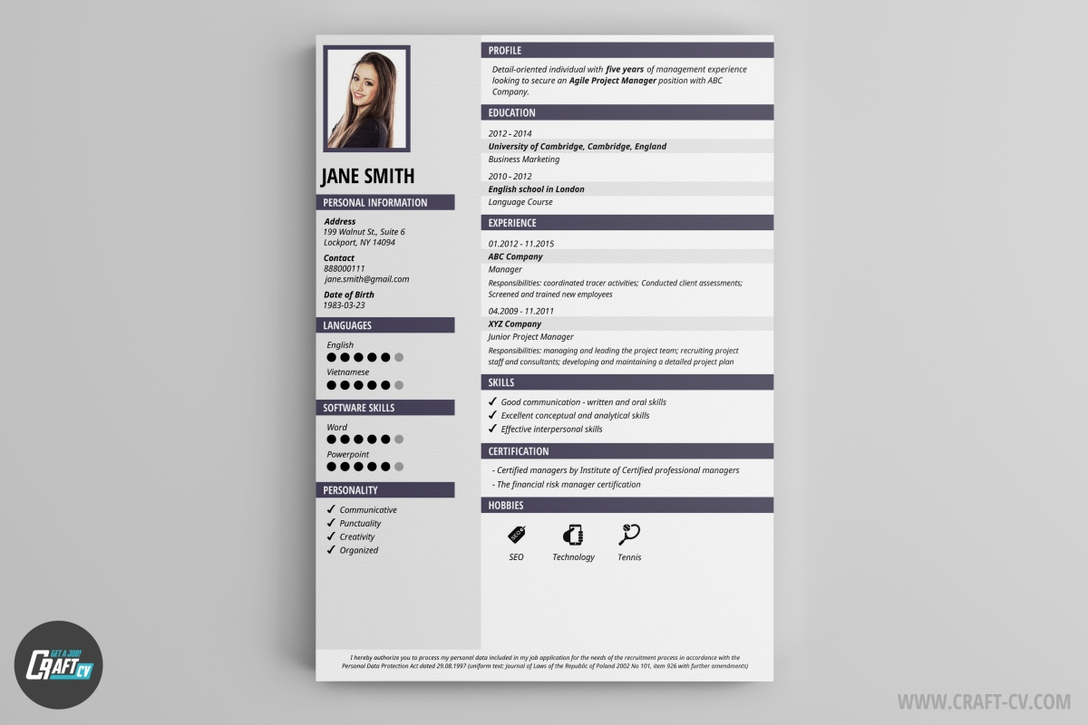 Cv Sample Png