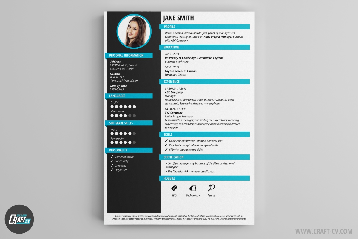 Creative CV CV Templates  Website Resume Examples