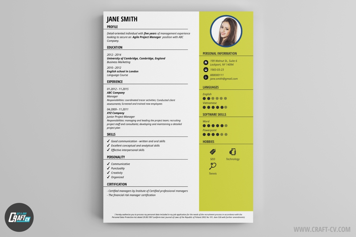 snap is a great cv for people who appreciate style and simple form the color field to the right is enhancing the visuability of important data so the